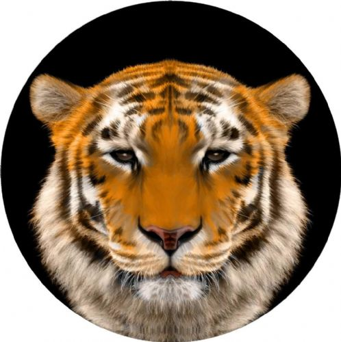 TIGER 4x4 Spare Wheel Cover DECAL STICKER